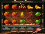 gioco slot machine Burning Cherry Gamescale